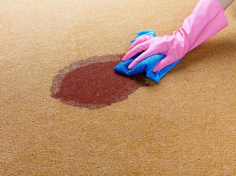 Nettoyage de carpette avec un shampoing