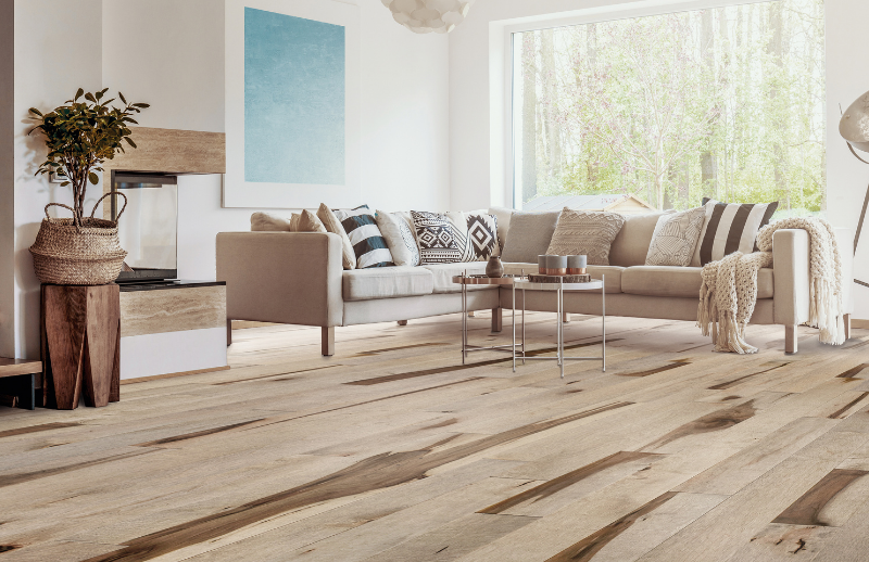Salon éclairé avec plancher de bois franc à ressource naturelle
